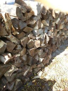 Dry Firewood, cut 3 years ago,,mixed, cut 16 inch lengths .