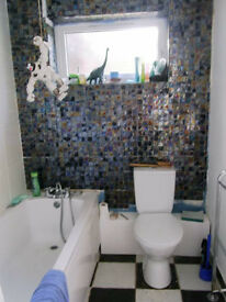 Pleasant double room in friendly, relaxed house.