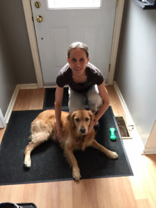 Dog Walking  Services In Willowdale, North York