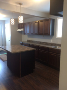 Basement Apartment for rent in the Pasadena area