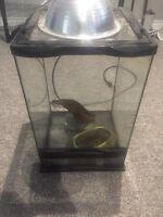 Small reptile aquarium