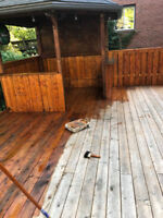 CHEAP FENCE/DECK STAINING/PAINTING