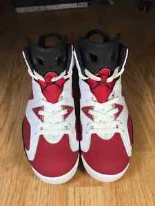 "AIR JORDAN 6 RETRO ""CARMINE"" Size 10.5"