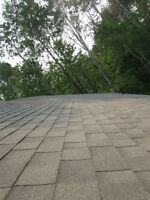 Need a New Roof? We've Got You Covered