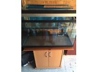 150L Aquarium Fish Tank with Stand and Overhead light