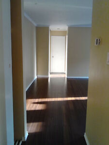 PET FRIENDLY 1 Bedroom Apartment Available June 1st 2017
