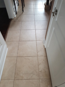 18 x 18 Porcelain Tile