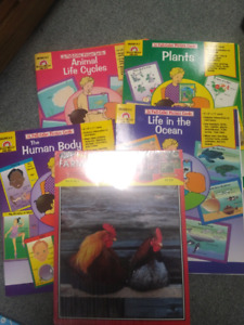 Brand new teacher resources evan moor picture cards life cycle