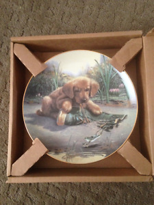 Puppy Playtime Plate Collection
