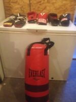 Everlast punching bag and gloves
