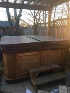 Hot Tub for sale,  great condition!