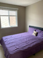 Share Fully Furnished House Only For Girls - Available Now