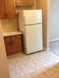 Spacious 2 bedroom in Shallow Lake