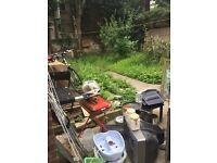 clean up in the garden