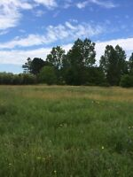 LAND FOR SALE-2.5 acres in Slate River Valley