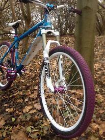 Identiti aka all mountain bike