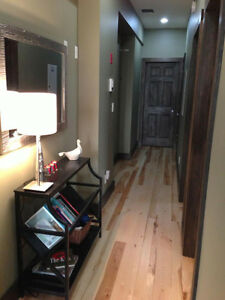 Room Avail in 3 BR High End Downtown Apartment - $850 incl Util Kingston Kingston Area image 7