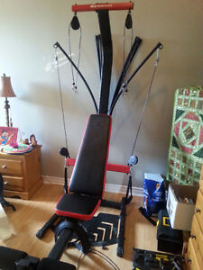 Mint Condition and Rarely used BOWFLEX Workout Machine
