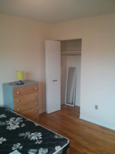 Available Now - Large bedroom in 2 bedroom apartment