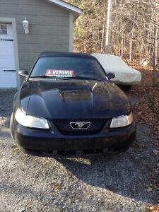 2000 Ford Mustang Convertible Gatineau Ottawa / Gatineau Area image 2