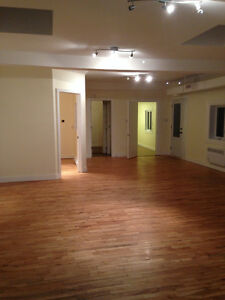 APT SHARING !own private Rom in a Large Loft-McGill /John ABBOTT