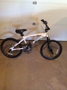20 inch Ironhorse BMX Bike