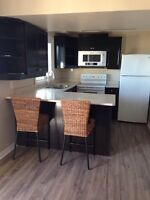Legal Bowmanville bachelor apartment $1000 utilities included