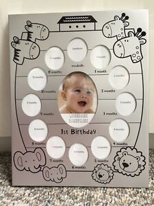 Baby's First Year Picture Photo Frame