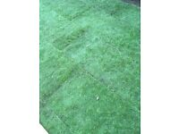 Turf for sale 15sqm