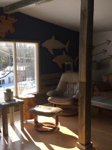 Cabin for sale @ Ditch Lake