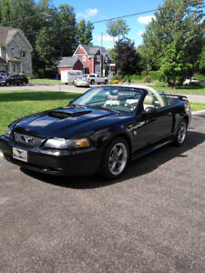 2004 Ford Mustang Convertible 40 ième anniversaire Cabriolet
