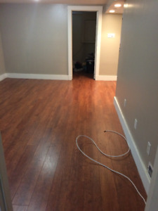 Cozy 2 bedroom basement apartment, everything included!!