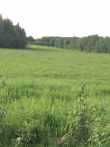 Recreational/Farm Land  North East of Edmonton Alberta