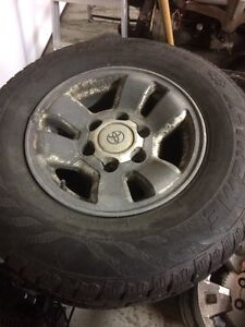 15 inch Avalanch extreme studded winter tires and rims