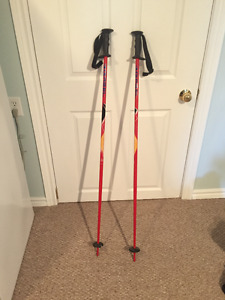 Gabel Ski Poles 120cm