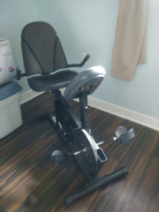 Exercise Bike Looking For a Workout