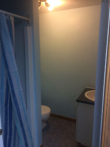 NEW, SPACIOUS CLEAN & AFFORDABLE ROOMS FOR RENT! Gatineau Ottawa / Gatineau Area image 9