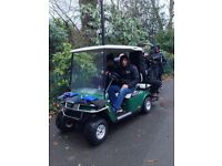 GOLF BUGGY FRONT PLASTIC, ROOF , WINDSCREEN AND FRONT CHROME BUMPER BARS AND IN PERECT CONDITION