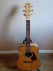 Fender DG 22s (Korean made)