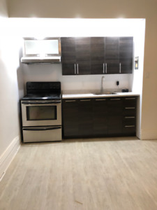 Newly Renovated 1 Bedroom Downtown - Available Immediately