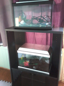 TWO 10 gallon fish tanks/aquariums with stand!!