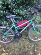 24 inch wheels Raleigh Zest mountain bike