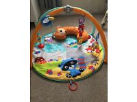 Fisher Price rainforest friends play mat and toys