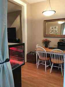 Stunning One bedroom with New washer and dryer Cambridge Kitchener Area image 5