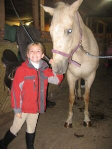 Horse back riding lessons for fun