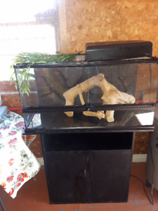 Tank and stand plus assorted bearded dragon items