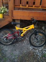 Bike for sale. Needs a tune up. 40 bucks