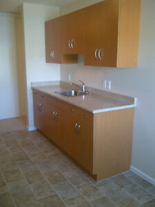 1 BEDROOM FULLY RENOVATED AND UPGRADED/SAHALI