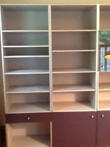 Large shelving units/bookcases