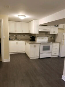 ***3 BEDROOM NEWLY RENOVATED BASMENT FOR RENT IN TRENTON